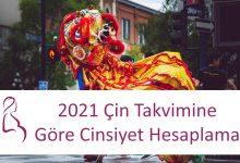 2021 Çin Takvimine Göre Cinsiyet